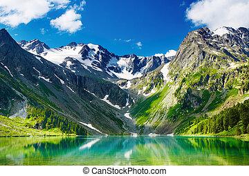 βουνήσιος ερυθρολακκίνη