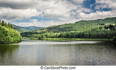 βουνό , ανάμεσα , αναδασώνω , λίμνη