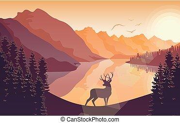 βουνό , ελάφι , λίμνη , ηλιοβασίλεμα , δάσοs , τοπίο