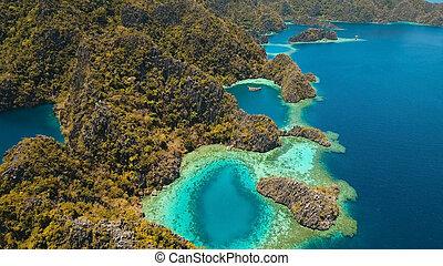 βουνό , φιλιππίνες , palawan., νησί , λίμνη , τροπικός , coron, σφυραίνα