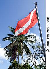 βουτιά , σημαία