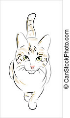 γάτα , παρδαλή ραβδωτή γάτα