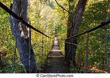 γέφυρα , μέταλλο , φθινόπωρο αναδασώνω , πόδι , στενός , απέναντι