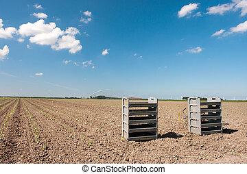 γεωργία , αγρός