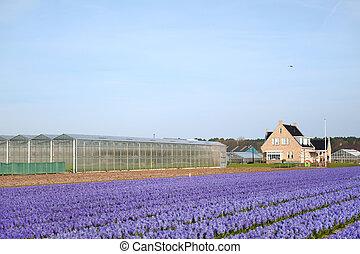 γεωργία , τοπίο , συμβία