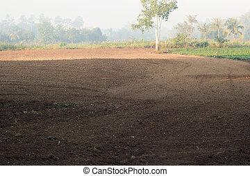 γεωργία , field.