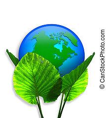 γη , γραφικός , οικολογία , πράσινο