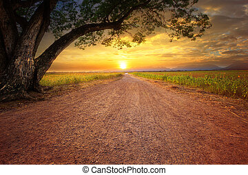 γη , scape , από , dustry, δρόμοs , μέσα , αγροτικός γεγονός...