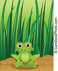 γρασίδι , γελοιογραφία , φόντο , βάτραχος