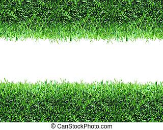 γρασίδι , πράσινο , άνοιξη , φόντο