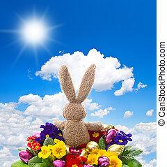 γραφικός , λαμπερός , αυγά , λουλούδια , easter κουνελάκι , ηρανθές