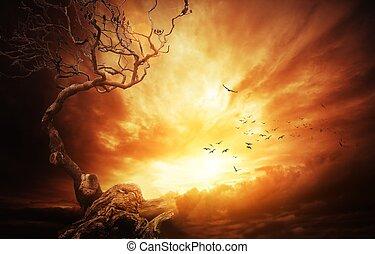 γριά , πάνω , δέντρο , θυελλώδης , sky.