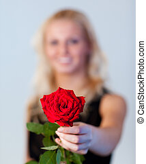 γυναίκα αμπάρι , νέος , εστία , τριαντάφυλλο