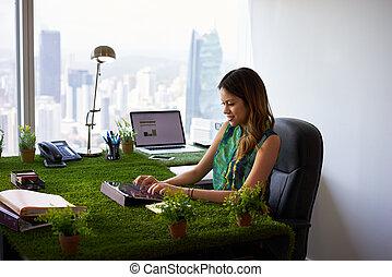 γυναίκα , γραφείο , δισκίο , περιβαλλοντολόγος , γραφείο , ...