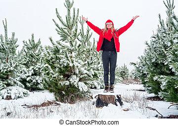 γυναίκα , δέντρο , χιόνι , πεύκο , αναδασώνω , standiing, σκεπαστός