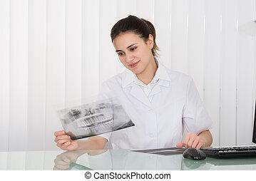 γυναίκα , οδοντίατρος , looking at , οδοντιατρικός ακτίνα ραίντγκεν