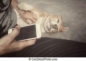 γυναίκα , χρησιμοποιώνταs , κομψός , τηλέφωνο , με , σκύλοs
