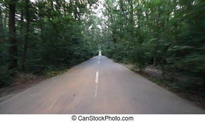 δάσοs , δρόμοs