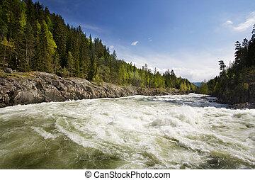 δάσοs , ποτάμι