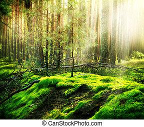 δάσοs