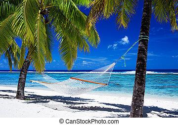 δέντρα , τροπικός , αιώρα , βάγιο , ανάμεσα , παραλία