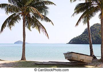 δέντρο , άμμοs , αρπάζω με το χέρι ακρογιαλιά , boat.