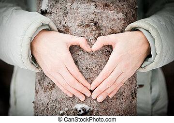 δέντρο , εραστήs