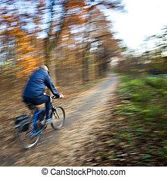 δίκυκλο καβαλλικεύω , μέσα , ένα , πάρκο της πόλης , επάνω , ένα , ωραίος , autumn/fall, ημέρα