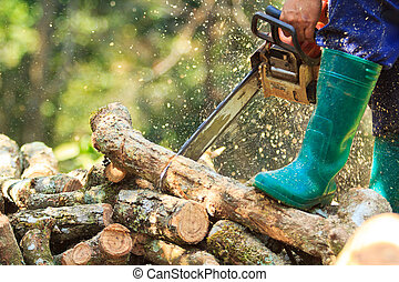 δηκτικός , chainsaw , καυσόξυλα , άντραs , σπίτι