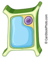 διάγραμμα , κελί , εκδήλωση , εργοστάσιο