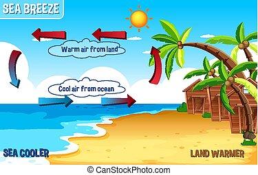 διάγραμμα , νερό , θάλασσα , αύρα , γη