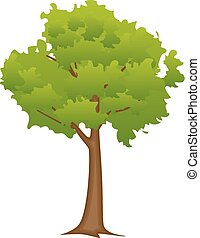 διαμέρισμα , αφαιρώ , δέντρο , ρυθμός