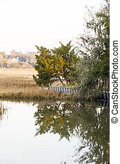 διατηρώ εξωτερικός τοίχος οικοδομής , wetland , βάλτος