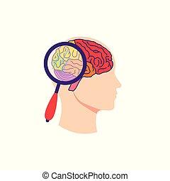 δοκιμάζω , εγκέφαλοs , γενική ιδέα , μικροβιοφορέας