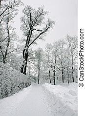 δρομάκι , πάρκο , χειμώναs
