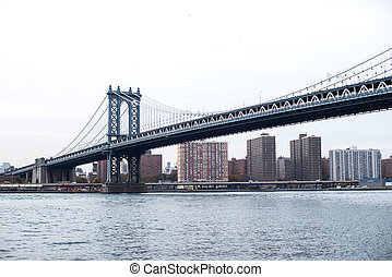 είδος κοκτέιλ γέφυρα , νέα υόρκη , η π α
