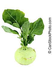 είδος λάχανου , λάχανο