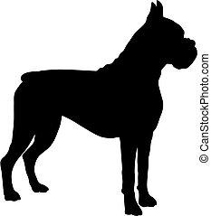 είδος σκύλου