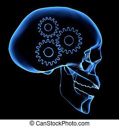 εγκέφαλοs , μηχανισμός