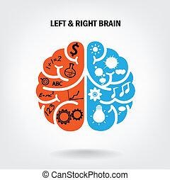 εγκέφαλοs , σωστό , δημιουργικός , αριστερά