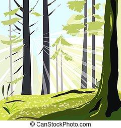 εικοσιτετράωρο ανέφελος , δέντρα , άνοιξη , δάσοs