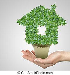 εικόνα , από , πράσινο , σύμβολο , από , προστασία του περιβάλλοντος , και , οικολογία
