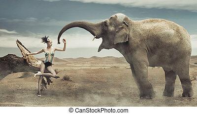 ελκυστικός προς το αντίθετον φύλον , μοντέρνος , κυρία , ελέφαντας