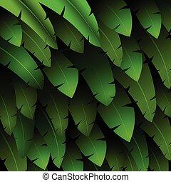 εξωτικός , πρότυπο , φύλλα , τροπικός
