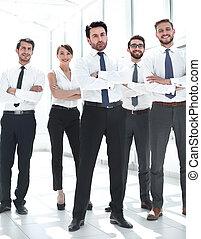 επαγγελματικός , μαζί , ακάθιστος , εργαζόμενος , εταιρεία
