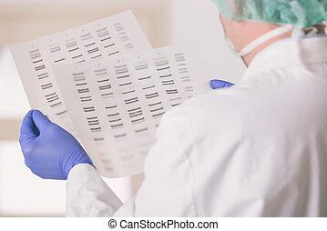 επιστήμονας , ακολουθία , analizing, dna