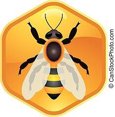 εργαζόμενος , σύμβολο , μέλισσα , μονό , μικροβιοφορέας , honeycell