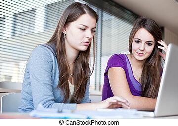 εργαζόμενος , φοιτητόκοσμος , laptop , δυο , ηλεκτρονικός υπολογιστής , κολλέγιο , γυναίκα
