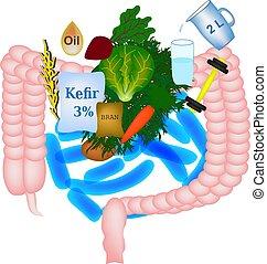 εσείs , ανάγκη , digestion., τι , μικροβιοφορέας , εικόνα , ...