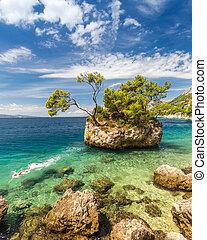 ευρώπη , brela, βράχοs , κροατία , κολυμβητής
